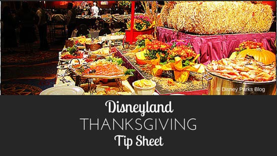 Disneyland Thanksgiving Tip Sheet Image