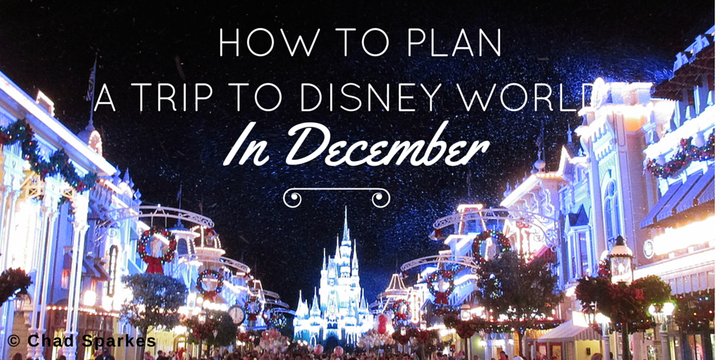 How to Plan a trip to Disney World in December
